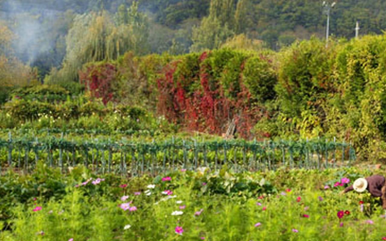 garden in 4-star hotel in dordogne
