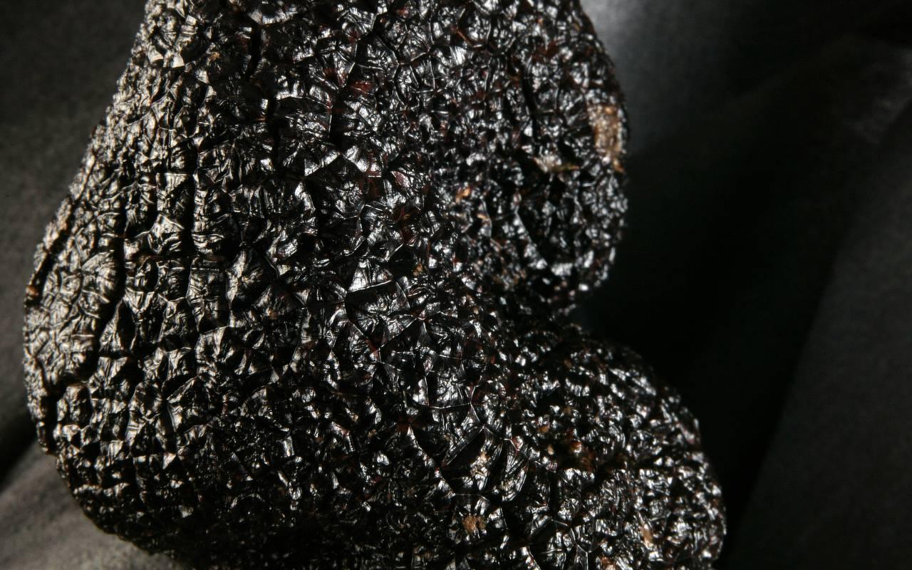 truffle restaurant tursac